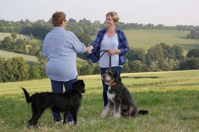 Hundetrainer im Einzeltraining